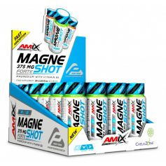 MagneShot Forte 375 mg 20 x 60 ml Amix Performance